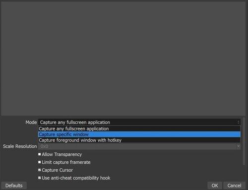 Capturar window.jpg específico